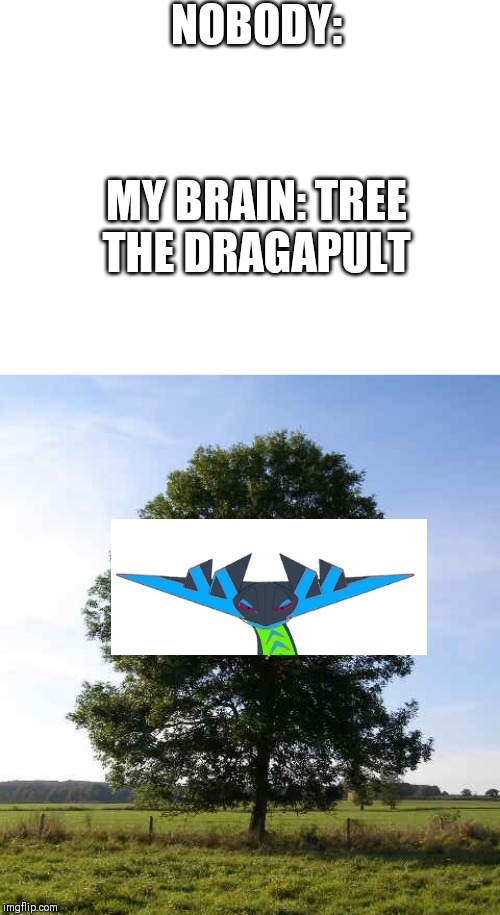 NOBODY: MY BRAIN: TREE THE DRAGAPULT | image tagged in blank white template | made w/ Imgflip meme maker
