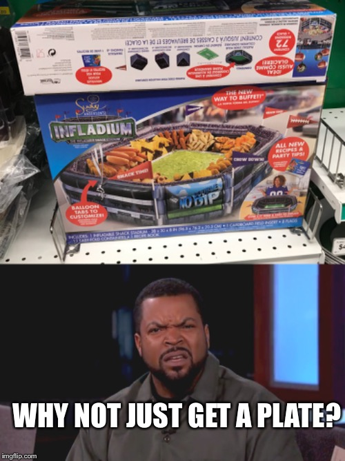 WHY NOT JUST GET A PLATE? | image tagged in really ice cube | made w/ Imgflip meme maker