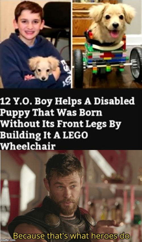 And they say you have issues if you play with LEGO's after a certain age. | image tagged in thats what heroes do,wheelchair,puppy,dogs,12,hero | made w/ Imgflip meme maker
