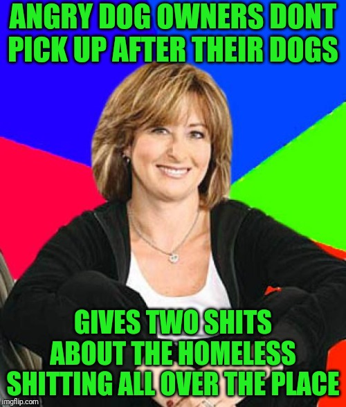 Sheltering Suburban Mom |  ANGRY DOG OWNERS DONT PICK UP AFTER THEIR DOGS; GIVES TWO SHITS ABOUT THE HOMELESS SHITTING ALL OVER THE PLACE | image tagged in memes,sheltering suburban mom | made w/ Imgflip meme maker