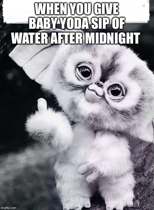 WHEN YOU GIVE BABY YODA SIP OF WATER AFTER MIDNIGHT | image tagged in baby yoda,baby,middle finger,gizmo,water,funny memes | made w/ Imgflip meme maker