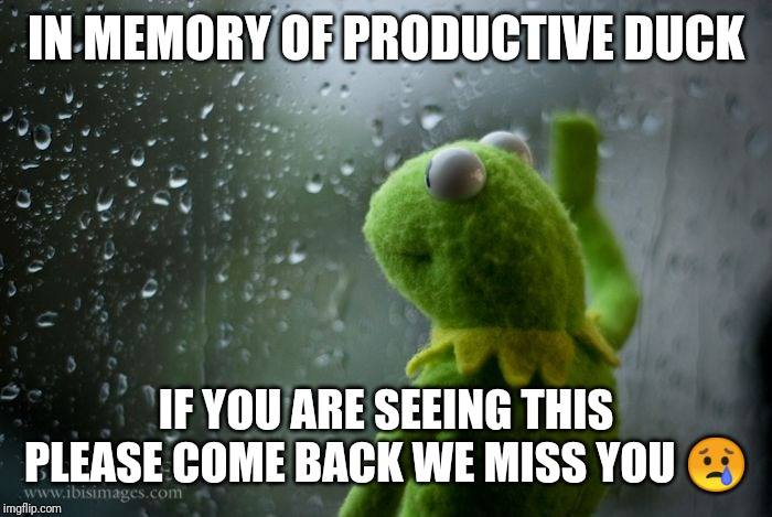 kermit window | IN MEMORY OF PRODUCTIVE DUCK IF YOU ARE SEEING THIS PLEASE COME BACK WE MISS YOU ? | image tagged in kermit window | made w/ Imgflip meme maker