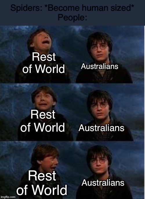 Ron Weasley Panic Meme | Spiders: *Become human sized* People: Rest of World Rest of World Rest of World Australians Australians Australians | image tagged in ron weasley panic meme | made w/ Imgflip meme maker
