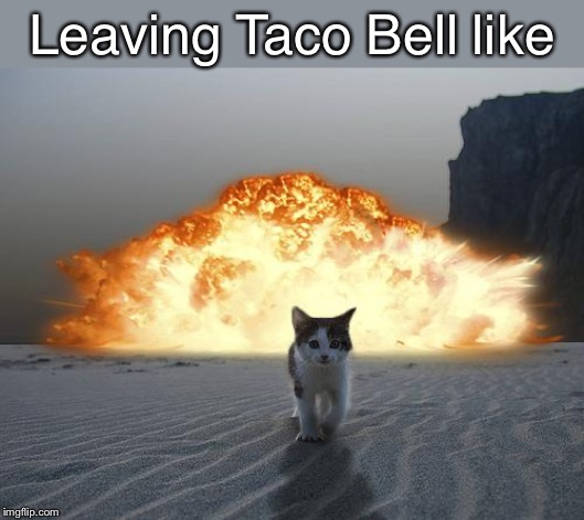 cat explosion | Leaving Taco Bell like | image tagged in cat explosion | made w/ Imgflip meme maker
