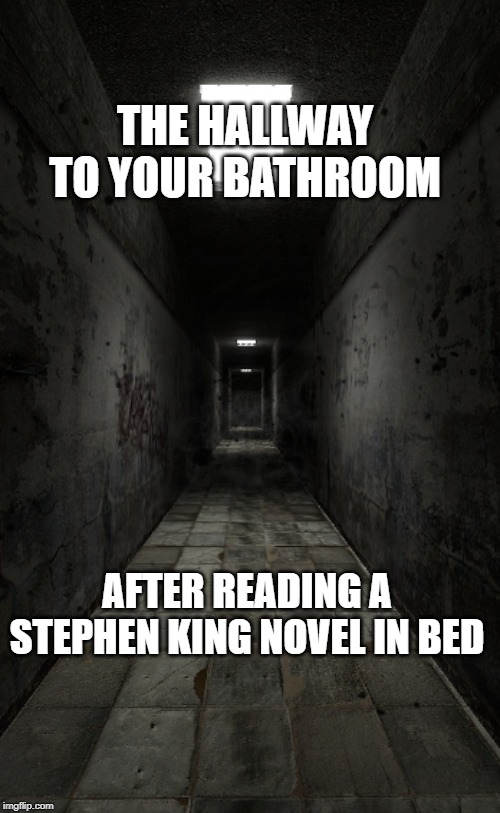 THE HALLWAY TO YOUR BATHROOM AFTER READING A STEPHEN KING NOVEL IN BED | image tagged in hallway | made w/ Imgflip meme maker