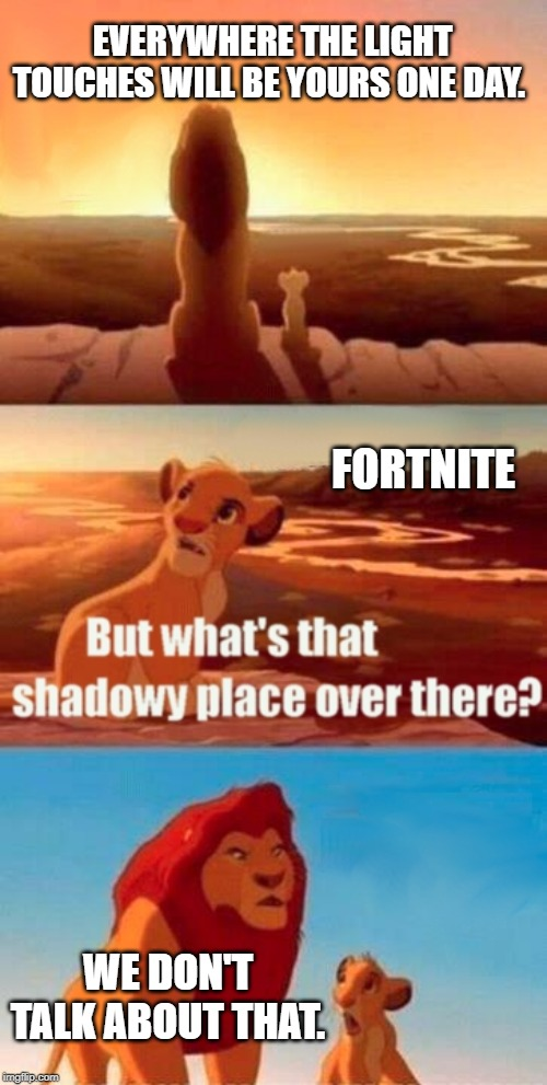 Simba Shadowy Place | EVERYWHERE THE LIGHT TOUCHES WILL BE YOURS ONE DAY. WE DON'T TALK ABOUT THAT. FORTNITE | image tagged in memes,simba shadowy place | made w/ Imgflip meme maker