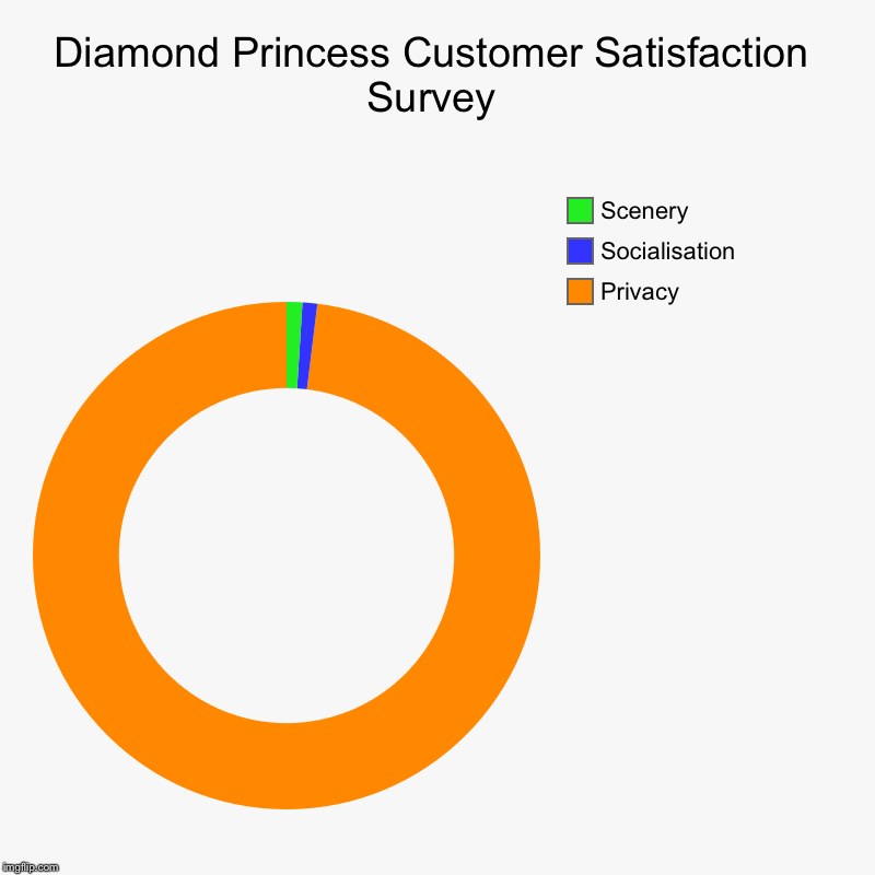 The positive spin | Diamond Princess Customer Satisfaction Survey | Privacy, Socialisation, Scenery | image tagged in charts,donut charts,coronavirus,cruise,cruise ship | made w/ Imgflip chart maker
