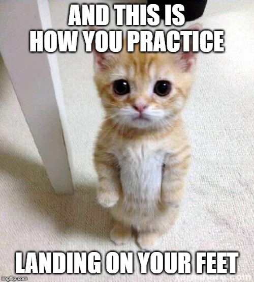 Cute Cat Meme | AND THIS IS HOW YOU PRACTICE LANDING ON YOUR FEET | image tagged in memes,cute cat | made w/ Imgflip meme maker