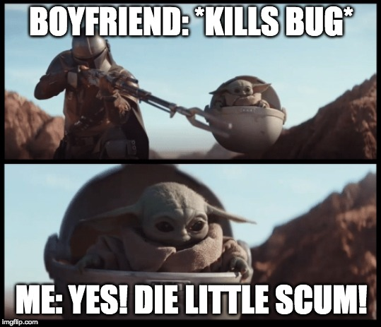 Baby Yoda |  BOYFRIEND: *KILLS BUG*; ME: YES! DIE LITTLE SCUM! | image tagged in baby yoda | made w/ Imgflip meme maker