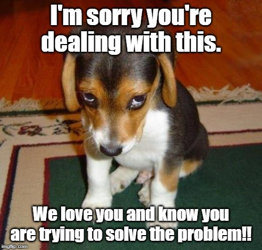 sorry |  I'm sorry you're dealing with this. We love you and know you are trying to solve the problem!! | image tagged in sorry | made w/ Imgflip meme maker