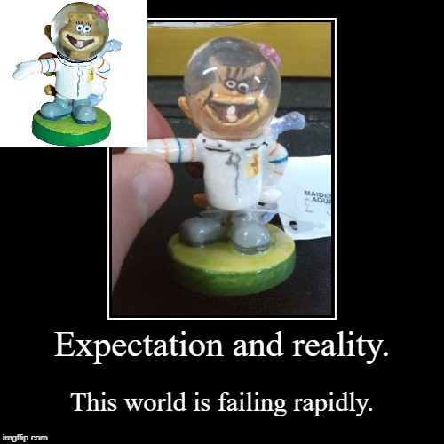 Expectation and reality. | This world is failing rapidly. | image tagged in funny,demotivationals | made w/ Imgflip demotivational maker