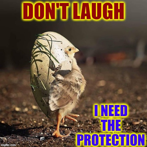 When Chicken Little Heard the Sky was Falling | DON'T LAUGH I NEED THE PROTECTION | image tagged in vince vance,chicken little,egg,shell,sky,falling | made w/ Imgflip meme maker