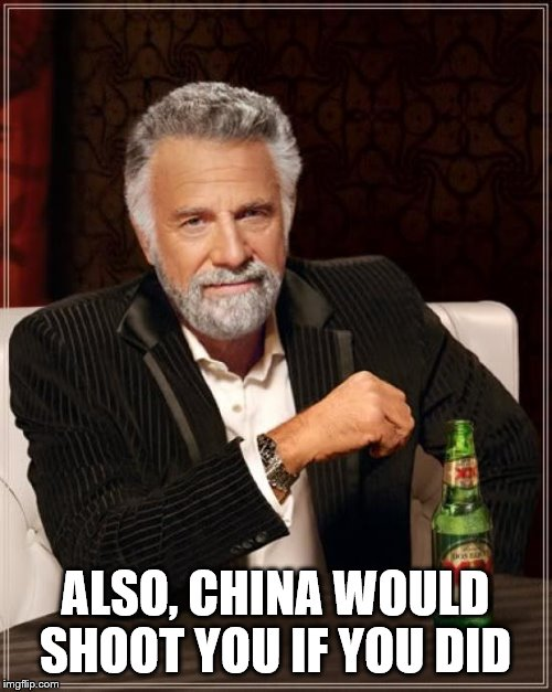 ALSO, CHINA WOULD SHOOT YOU IF YOU DID | image tagged in memes,the most interesting man in the world | made w/ Imgflip meme maker