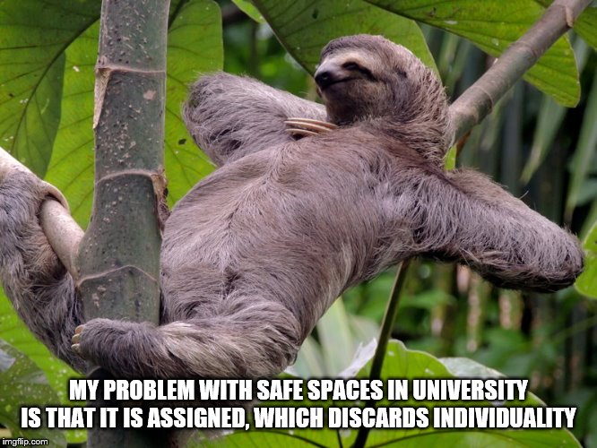 MY PROBLEM WITH SAFE SPACES IN UNIVERSITY IS THAT IT IS ASSIGNED, WHICH DISCARDS INDIVIDUALITY | image tagged in lazy sloth | made w/ Imgflip meme maker