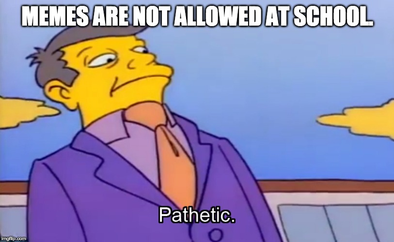 Pathetic Principal | MEMES ARE NOT ALLOWED AT SCHOOL. | image tagged in pathetic principal | made w/ Imgflip meme maker