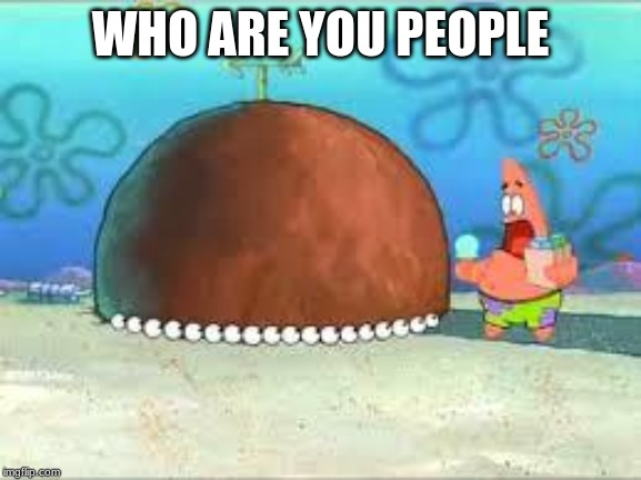 WHO ARE YOU PEOPLE? | WHO ARE YOU PEOPLE | image tagged in who are you people | made w/ Imgflip meme maker