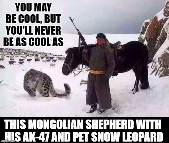 COOL LEVEL: expert | YOU MAY BE COOL, BUT YOU'LL NEVER BE AS COOL AS THIS MONGOLIAN SHEPHERD WITH  HIS AK-47 AND PET SNOW LEOPARD | image tagged in vince vance,mongolian shepherd,ak-47,snow,leopard,horse | made w/ Imgflip meme maker