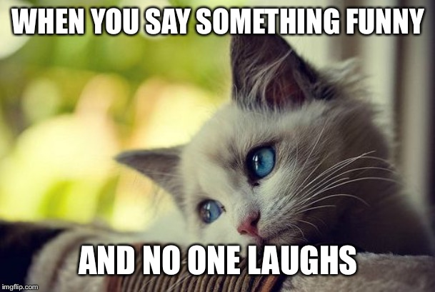 First World Problems Cat Meme |  WHEN YOU SAY SOMETHING FUNNY; AND NO ONE LAUGHS | image tagged in memes,first world problems cat | made w/ Imgflip meme maker