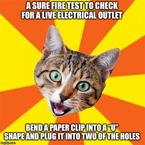 "Bad Advice Cat |  A SURE FIRE TEST TO CHECK FOR A LIVE ELECTRICAL OUTLET; BEND A PAPER CLIP INTO A ""U"" SHAPE AND PLUG IT INTO TWO OF THE HOLES 
