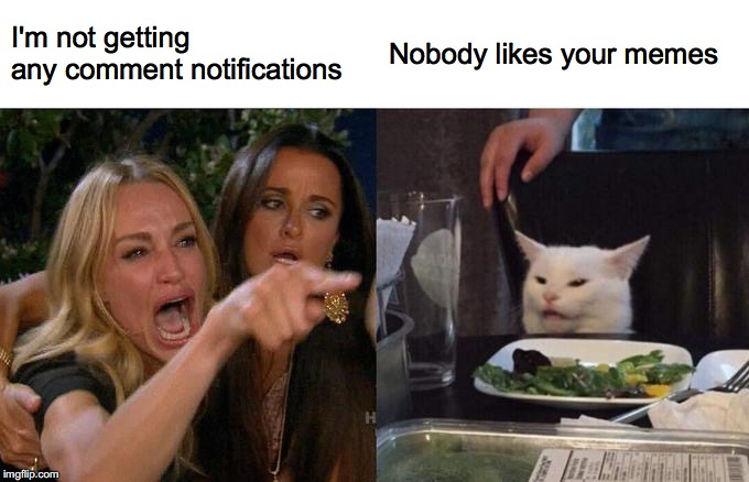 Woman Yelling At Cat |  I'm not getting any comment notifications; Nobody likes your memes | image tagged in memes,woman yelling at cat,comments,notifications | made w/ Imgflip meme maker