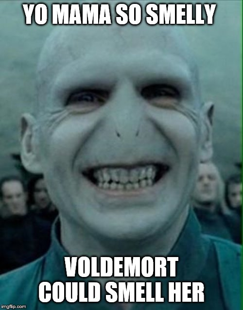 Voldemort Grin | YO MAMA SO STINKY VOLDEMORT COULD SMELL HER | image tagged in voldemort grin | made w/ Imgflip meme maker