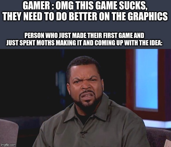 Really? Ice Cube | GAMER : OMG THIS GAME SUCKS, THEY NEED TO DO BETTER ON THE GRAPHICS PERSON WHO JUST MADE THEIR FIRST GAME AND JUST SPENT MOTHS MAKING IT AND | image tagged in really ice cube | made w/ Imgflip meme maker