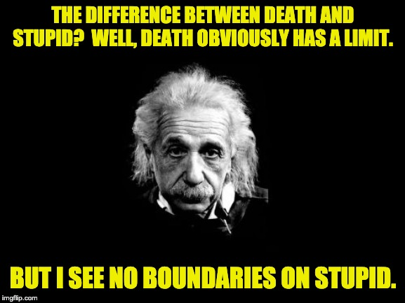 Albert Einstein 1 |  THE DIFFERENCE BETWEEN DEATH AND STUPID?  WELL, DEATH OBVIOUSLY HAS A LIMIT. BUT I SEE NO BOUNDARIES ON STUPID. | image tagged in memes,albert einstein 1 | made w/ Imgflip meme maker