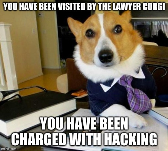 YOU HAVE BEEN VISITED BY THE LAWYER CORGI YOU HAVE BEEN CHARGED WITH HACKING | image tagged in lawyer corgi dog | made w/ Imgflip meme maker