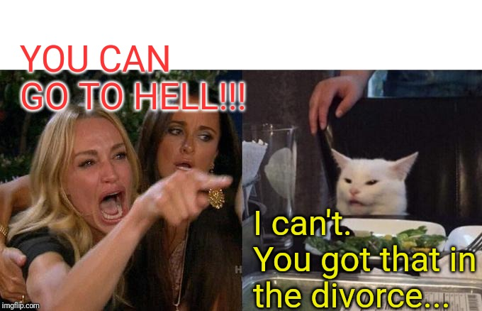 Woman Yelling At Cat |  YOU CAN GO TO HELL!!! I can't. You got that in the divorce... | image tagged in memes,woman yelling at cat | made w/ Imgflip meme maker