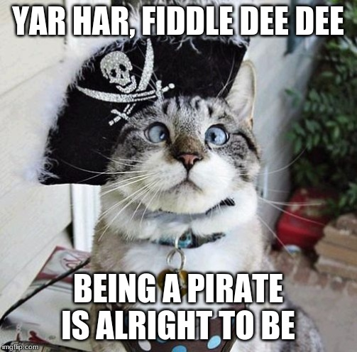 YAR HAR, FIDDLE DEE DEE BEING A PIRATE IS ALRIGHT TO BE | image tagged in memes,spangles | made w/ Imgflip meme maker