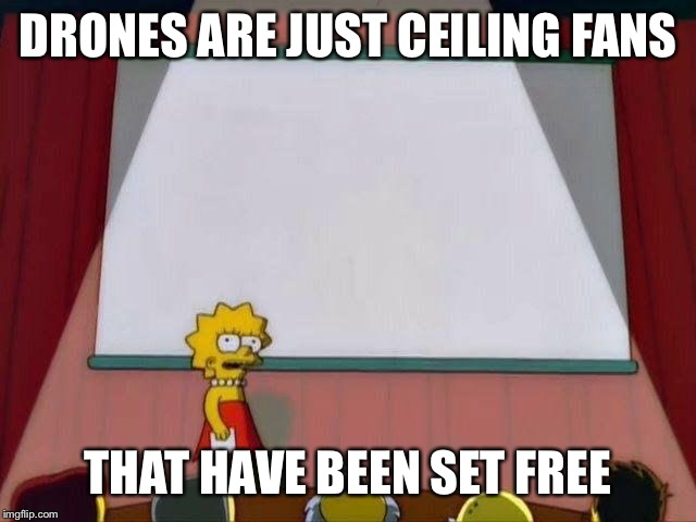 Lisa Simpson's Presentation |  DRONES ARE JUST CEILING FANS; THAT HAVE BEEN SET FREE | image tagged in lisa simpson's presentation | made w/ Imgflip meme maker