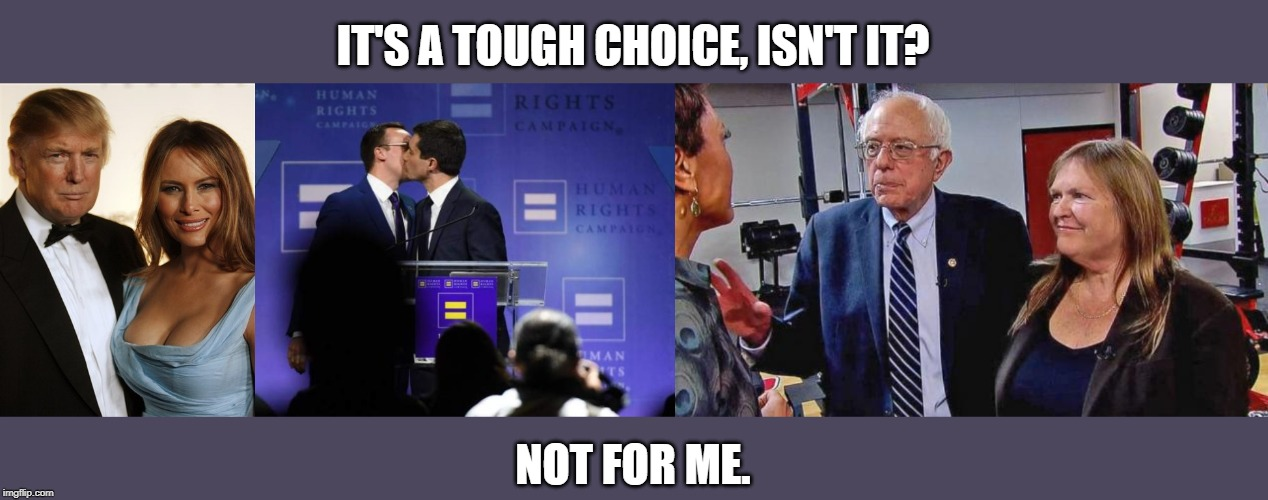 who do you choose? |  IT'S A TOUGH CHOICE, ISN'T IT? NOT FOR ME. | image tagged in trump,buttigieg,sanders,2020 elections | made w/ Imgflip meme maker