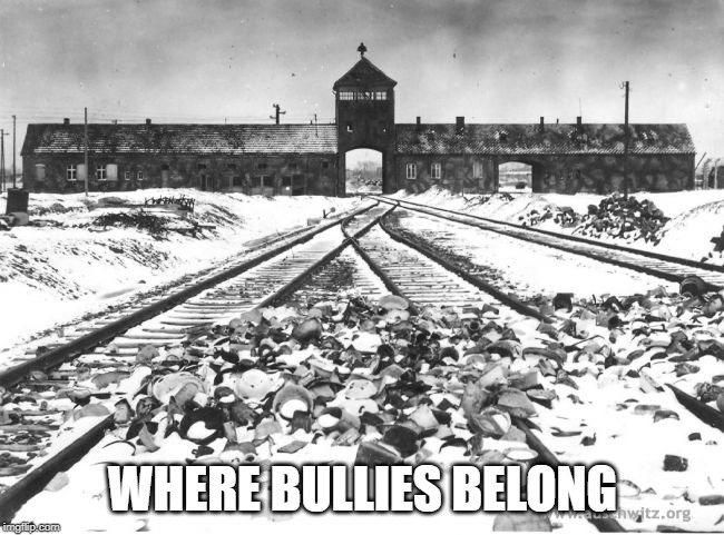 Auschwitz |  WHERE BULLIES BELONG | image tagged in auschwitz | made w/ Imgflip meme maker