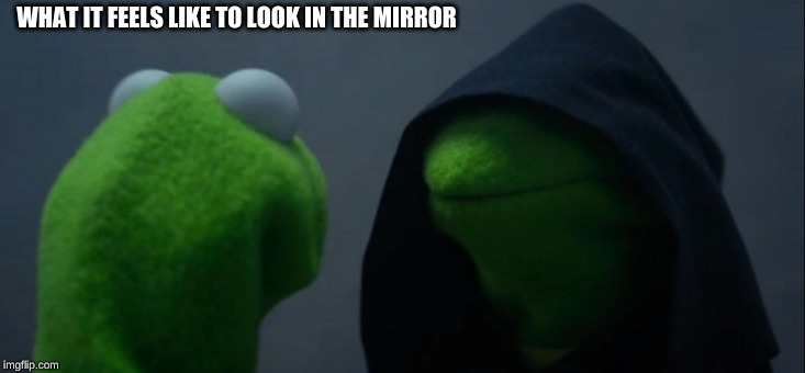 Evil Kermit | WHAT IT FEELS LIKE TO LOOK IN THE MIRROR | image tagged in memes,evil kermit | made w/ Imgflip meme maker