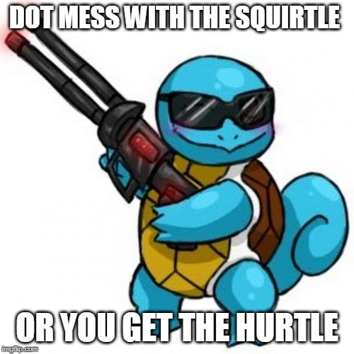 squirtle |  DOT MESS WITH THE SQUIRTLE; OR YOU GET THE HURTLE | image tagged in squirtle | made w/ Imgflip meme maker