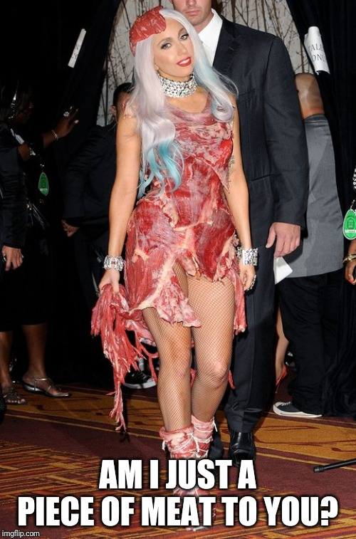 Lady Gaga | AM I JUST A PIECE OF MEAT TO YOU? | image tagged in lady gaga | made w/ Imgflip meme maker