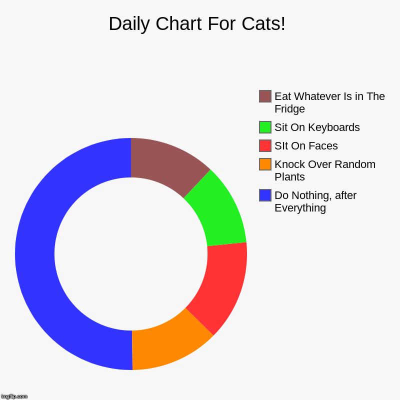 It Makes Sense-Ish | Daily Chart For Cats! | Do Nothing, after Everything, Knock Over Random Plants, SIt On Faces, Sit On Keyboards , Eat Whatever Is in The Frid | image tagged in charts,donut charts,cat charts | made w/ Imgflip chart maker