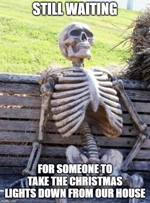 Waiting Skeleton |  STILL WAITING; FOR SOMEONE TO TAKE THE CHRISTMAS LIGHTS DOWN FROM OUR HOUSE | image tagged in memes,waiting skeleton | made w/ Imgflip meme maker