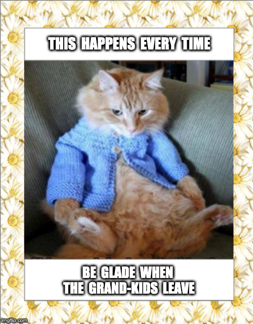 Lolcats Kids Lol At Funny Cat Memes Funny Cat Pictures With