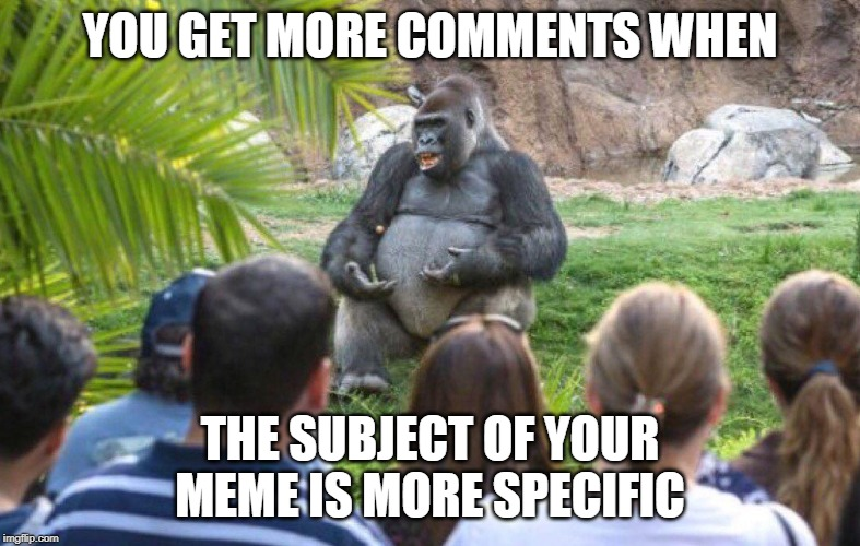Gorilla lecture | YOU GET MORE COMMENTS WHEN THE SUBJECT OF YOUR MEME IS MORE SPECIFIC | image tagged in gorilla lecture | made w/ Imgflip meme maker