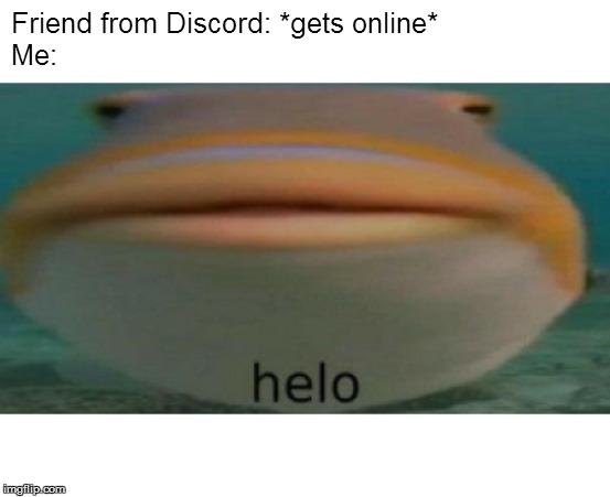 Do you relate? |  Friend from Discord: *gets online* Me: | image tagged in helo,fish,phish,discord,friend,online | made w/ Imgflip meme maker