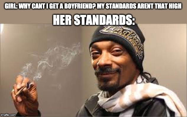 GIRL: WHY CANT I GET A BOYFRIEND? MY STANDARDS ARENT THAT HIGH; HER STANDARDS: | image tagged in snoop dogg,memes,funny,her standards meme,girls vs boys meme,snoop dogg high meme | made w/ Imgflip meme maker