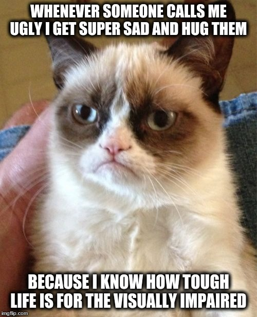 Grumpy Cat |  WHENEVER SOMEONE CALLS ME UGLY I GET SUPER SAD AND HUG THEM; BECAUSE I KNOW HOW TOUGH LIFE IS FOR THE VISUALLY IMPAIRED | image tagged in memes,grumpy cat | made w/ Imgflip meme maker