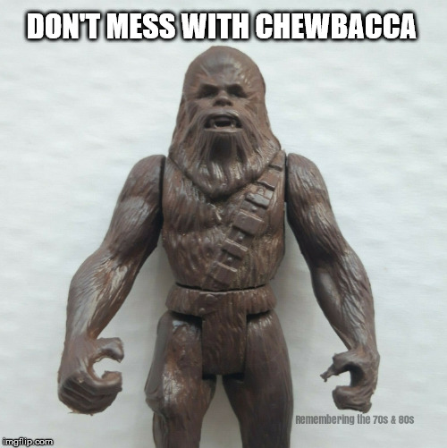 Chewbacca |  DON'T MESS WITH CHEWBACCA | image tagged in chewbacca,star wars | made w/ Imgflip meme maker