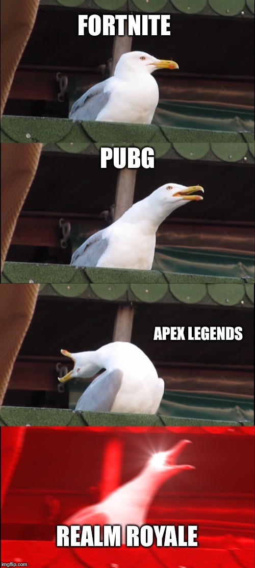 Inhaling Seagull Meme |  FORTNITE; PUBG; APEX LEGENDS; REALM ROYALE | image tagged in memes,inhaling seagull | made w/ Imgflip meme maker