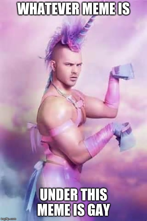 Gay Unicorn |  WHATEVER MEME IS; UNDER THIS MEME IS GAY | image tagged in gay unicorn | made w/ Imgflip meme maker