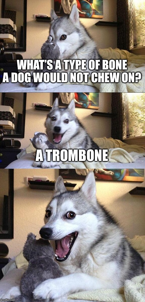 Bad Pun Dog |  WHAT'S A TYPE OF BONE A DOG WOULD NOT CHEW ON? A TROMBONE | image tagged in memes,bad pun dog | made w/ Imgflip meme maker