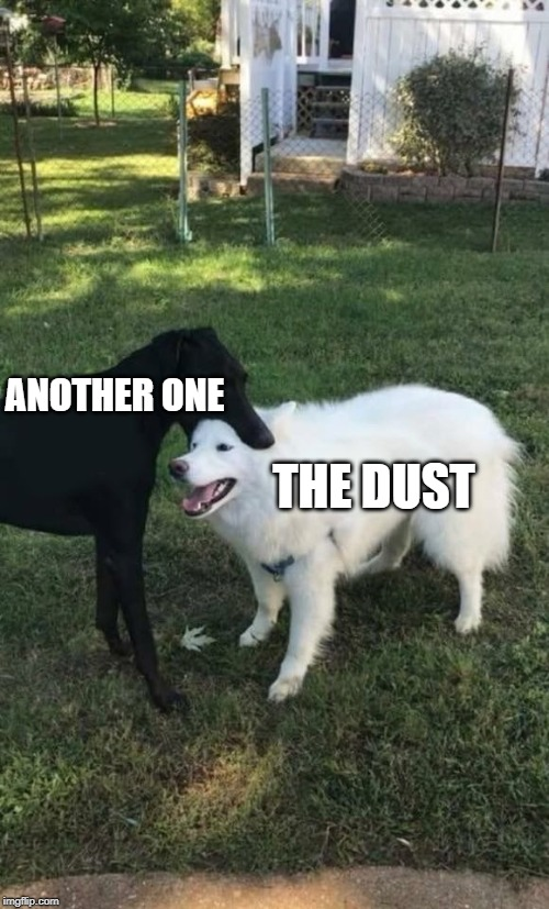 Dog eat dog | ANOTHER ONE THE DUST | image tagged in dog bite,memes,queen | made w/ Imgflip meme maker