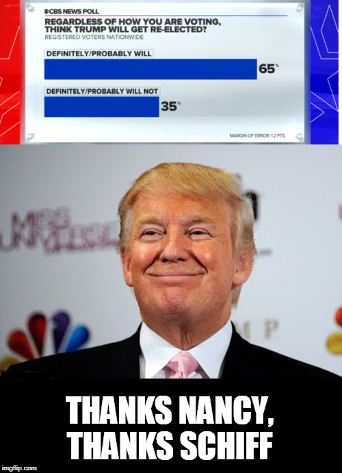 poll.. | THANKS NANCY, THANKS SCHIFF | image tagged in donald trump approves,impeachment,nancy pelosi,adam schiff,pretty little liars | made w/ Imgflip meme maker