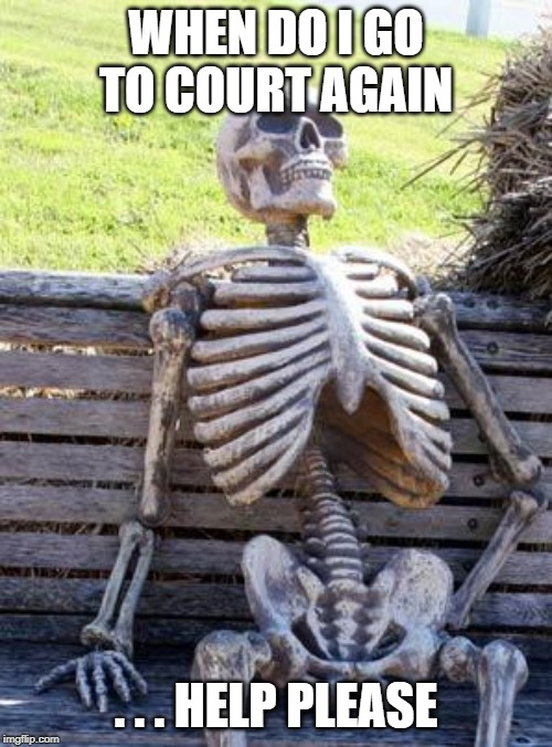 Waiting Skeleton |  WHEN DO I GO TO COURT AGAIN; . . . HELP PLEASE | image tagged in memes,waiting skeleton | made w/ Imgflip meme maker